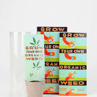 Grow Your Own Weed Kit