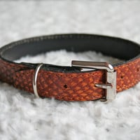 SALE! Classical brown Genuine Leather Dog collar, covered with Salmon Fish Leather