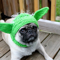 Dog Hat Yoda / Made To Order by Sweethoots on Etsy