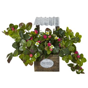 Strawberry Bush In Garden Planter