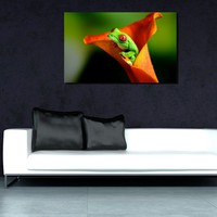 canik82 Canvas Print Stretched Wrapped calla flower frog 26x42""