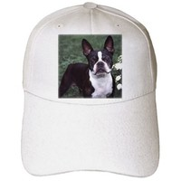 Dogs Boston Terrier - Boston Terrier Duke - Caps