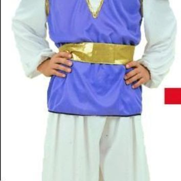 Free shipping , Halloween party costume , Indian prince costume , Aladdin Arabian prince clothing clothes