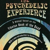 The Psychedelic Experience Citadel Underground