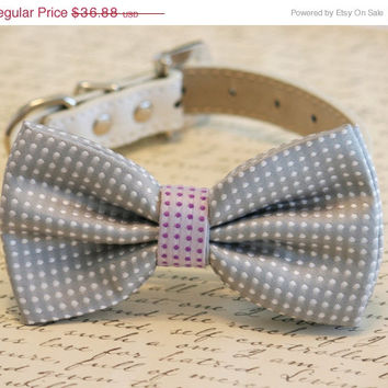 Gray Polka dots bow tie, Gray and purple Bow Pet Accessory, Birthday Gift, Dog Lovers, Pet wedding accessory