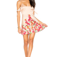 LPA Dress 191 in Border Floral