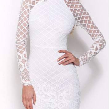 White Turtleneck Long Sleeve Sheer Lace Bodycon Mini Dress