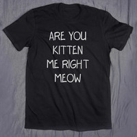 Are You Kitten Me Right Meow Tumblr Tee Slogan Funny Cat Pun Animal Lover T-shirt
