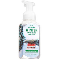 WINTERGentle Foaming Hand Soap