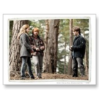 Hermione, Ron, and Harry 2 Postcards from Zazzle.com
