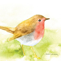 Robin Watercolor Painting - 5 x 7 - Giclee Print - Bird Painting
