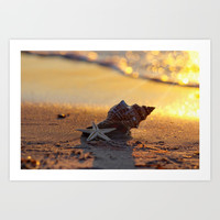 Golden Summer on the Beach Art Print by Tanja Riedel