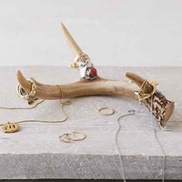 Decorative Antler- Brown One