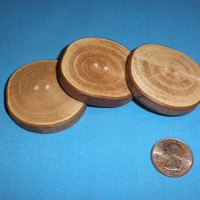 """3 Large Wood Buttons 2"""", Maple Tree Branch, 2 Hole Rustic Wooden Buttons, Handcrafted for Knitting, Crochet, Home Decor or Crafts"""