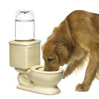 Toilet Dog & Cat Water Bowl