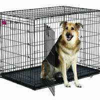"Midwest ACE Double Door Dog Crate 43"" x 29"" x 30.5"""