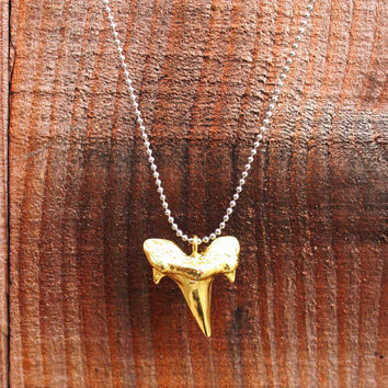 Shark Tooth Pendant Necklace - Gold