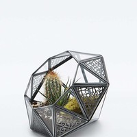 Urban Grow Star Lace Diamond Terrarium - Urban Outfitters