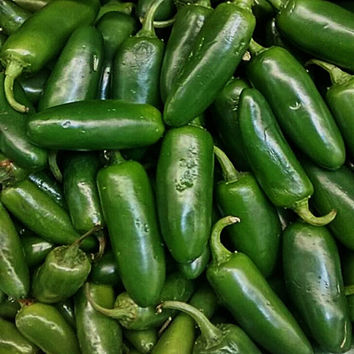 Jalapeno Chili Hot Heirloom Pepper Seeds Non-GMO Naturally Grown Open Pollinated