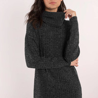 Tamra Turtleneck Shift Dress