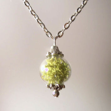 Real Moss Orb Sphere Glass Round Terrarium Pendant Necklace