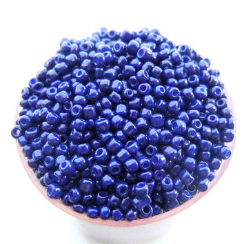 Free Shipping Sale Blue Purple Color Shining 1000Pcs 2mm Czech Glass Seed Spacer Beads Jewelry Making DIY Pick 46 Colors