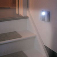 Motion-Activated Security/Accent Light
