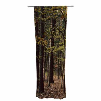 """Sylvia Coomes """"Choose Your Own Adventure"""" Green Brown Photography Decorative Sheer Curtain"""