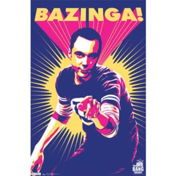 Big Bang Theory Domestic Poster