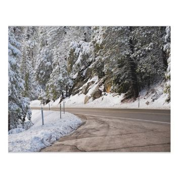 Snowfall Lake Tahoe Road Panel Wall Art