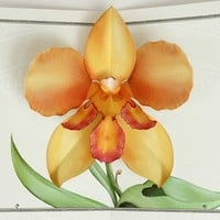 orange tiger orchid flower pop up card by crankbunny on Etsy
