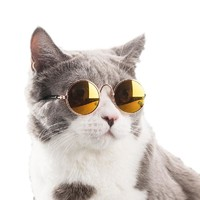 FREE Pet Sunglasses