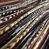 Feather Extensions  Black and Brown Grizzly Cree by PrettyVagrant