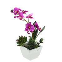"""12"""" Artificial Pink Orchid with Red and Green Succulent Plants in a Decorative Square White Pot"""
