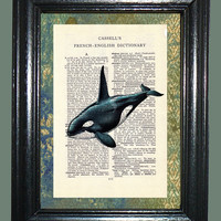 Sea Life Killer Whale Art -- Vintage Dictionary Book Page Art - Upcycled Page Art - Collage Art - Mixed Media Art