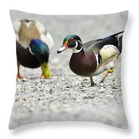 "Wood Duck Pair With A Mallard 14"" x 14"" Throw Pillow for Sale by Priya Ghose"