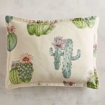 Painted Cactus Standard Pillow Sham