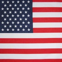 American Flag Bandana By CoverYourHair