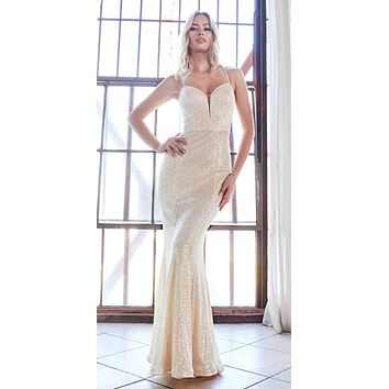 Long Fitted Sequin Gown Opal-Champagne Deep Sweetheart Neckline Criss Cross Back