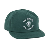 Only NY: Garden Center Snapback Hat - Spruce