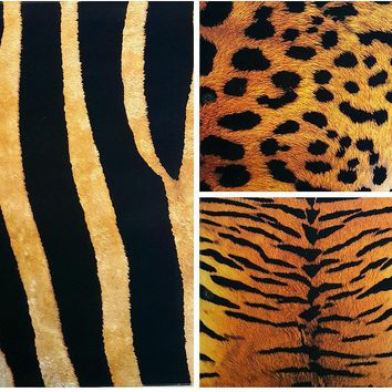 Two Pocket Folders Animal Skin Texture - CASE OF 50