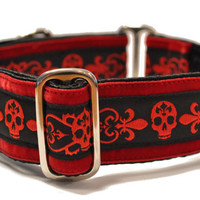 Danger Dog Jacquard Martingale Collar - 1.5 Inch