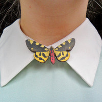 Cute Moth Insect Bug Butterfly Nature Collar Pin Badge Brooch