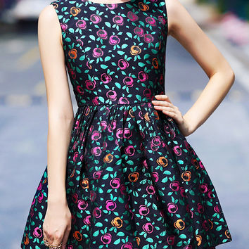 Printed Sleeveless High Waist A-Line Mini Skater Dress