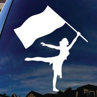 "Color Guard Car Window Vinyl Decal Sticker 4"" Wide"