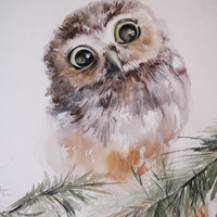 Baby Owl - Watercolor Painting, Original Watercolor Painting Art, Bird Painting, Owl Painting, Brown Green