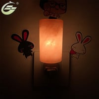 Hand Carved Natural Crystal Himalayan Salt Lamp Mini Night Light with UL-Approved Wall Plug Cylindrical Home Decor Portable Lamp