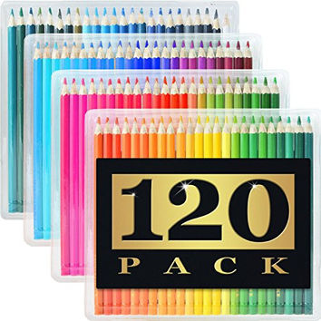 Artist's Choice 120-Pack Colored Pencils