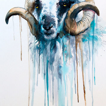 "Sheep watercolor painting print 8"" x 12"" goat, animal, illustration, animal watercolor, Ovis aries, Capra"