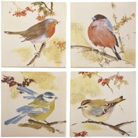 Song Birds Art Set